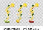 set of halved green apple and...   Shutterstock .eps vector #1915359319