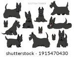 Scottish Terrier Dogs In...