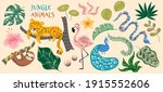 abstract jungle background.... | Shutterstock .eps vector #1915552606