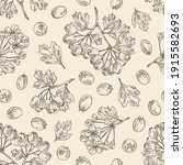 seamless pattern with hawthorn  ... | Shutterstock .eps vector #1915582693