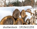 Pile Of Firewood In Winter....