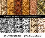 animal skin seamless pattern... | Shutterstock .eps vector #1916061589