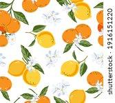 mandarins and lemons floral... | Shutterstock .eps vector #1916151220