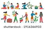 gardeners people cultivate... | Shutterstock .eps vector #1916366933