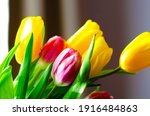 Tulip Bouquet For Lovely Ladies ...