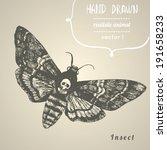 death's head hawk moth. hand... | Shutterstock .eps vector #191658233