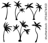 coconut palm tree silhouette... | Shutterstock .eps vector #1916676410