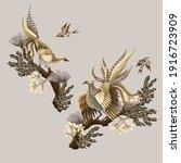 golden pheasants  birds and...   Shutterstock .eps vector #1916723909