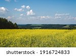 Yellow Rapeseed Field In Rural  ...