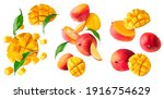 A Set With Fresh Ripe Mango...