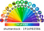 a ph scale on white background...   Shutterstock .eps vector #1916983586