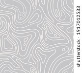 topographic map seamless...   Shutterstock .eps vector #1917012533