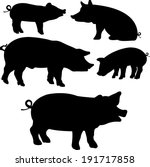 pigs collection   vector... | Shutterstock .eps vector #191717858