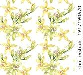 botanical illustration of... | Shutterstock .eps vector #1917190670