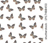 Vector Butterfly Seamless...