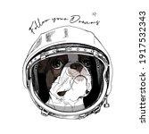 funny boston terrier in the... | Shutterstock .eps vector #1917532343