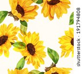 Seamless Watercolour Sunflower...