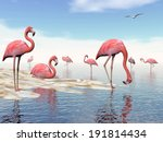 flock of pink flamingos at the... | Shutterstock . vector #191814434