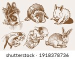 graphical vintage set of... | Shutterstock .eps vector #1918378736