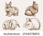 graphical vintage set of... | Shutterstock .eps vector #1918378853