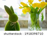 Cute Green Grass Bunny Rabbit...