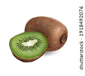whole kiwi with a half kiwi on... | Shutterstock . vector #1918492076
