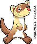 baby ferret | Shutterstock .eps vector #19185355