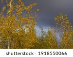 before the storm in the... | Shutterstock . vector #1918550066