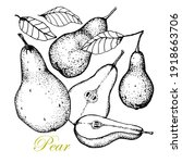 pear . isolated hand drawn full ...   Shutterstock .eps vector #1918663706