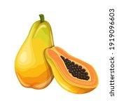 papaya fruit vector...   Shutterstock .eps vector #1919096603