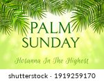 Palm Sunday   Greeting Banner...