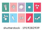 cute cartoon coloring page for...   Shutterstock .eps vector #1919282939