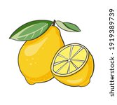 ripe juicy lemon. whole citrus...   Shutterstock .eps vector #1919389739
