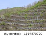 Surface Of A Mountain With...