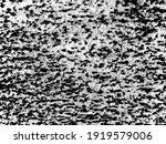 vintage dirty brush texture.... | Shutterstock .eps vector #1919579006