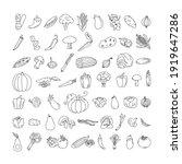 vegetable element doodle line... | Shutterstock .eps vector #1919647286