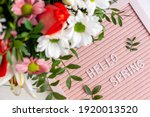 Text Hello Spring On Pink...