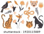 tropical exotic animals  birds... | Shutterstock .eps vector #1920115889