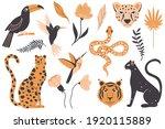 tropical exotic animals  birds...   Shutterstock .eps vector #1920115889
