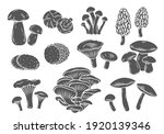 edible mushrooms glyph vector... | Shutterstock .eps vector #1920139346