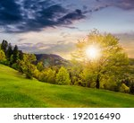 summer; landscape. forest on the meadow near the forest on hillside of mountain in fog at sunset - stock photo