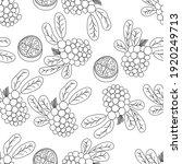 tropical fruits line seamless...   Shutterstock .eps vector #1920249713