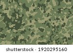 military camouflage texture... | Shutterstock .eps vector #1920295160