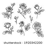 set of decorative fresh... | Shutterstock .eps vector #1920342200