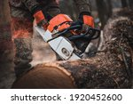 Small photo of Chainsaw. Close-up of woodcutter sawing chain saw in motion, sawdust fly to sides. Chainsaw in motion. Hard wood working in forest. Sawdust fly around. Firewood processing.