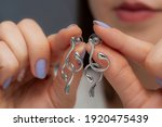 Silver Curved Earrings In The...
