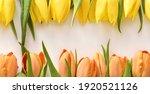 Yellow And Orange Tulips On...