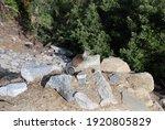Squirrel On A Rock  Yosemite...