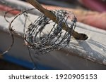 A Coil Of Barbed Wire