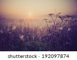 foggy morning on meadow.... | Shutterstock . vector #192097874